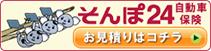 そんぽ24自動車保険